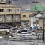 tsunami.response